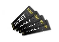 Christmas ShinyLAN 2020 Ticket